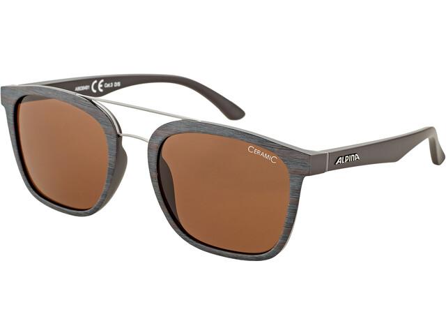 Alpina Caruma I Gafas, brown-grey matt/brown
